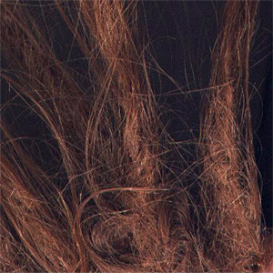 Auxiliary album cover